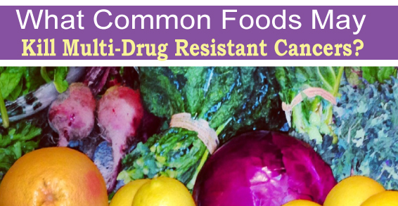 What Common Foods May Kill Multi-Drug Resistant Cancers?